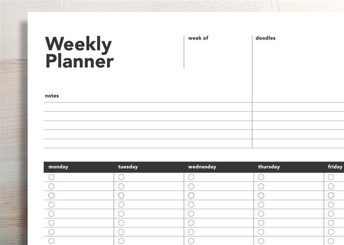 MAC Weekly Activity/Assignment Form