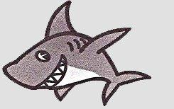 Captain Gray Sharks